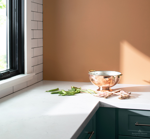 Kitchen corner with white countertops and wall painted in Potters Clay 1221.
