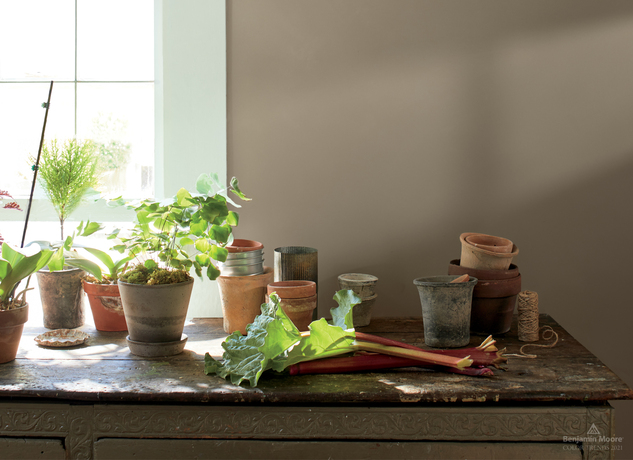 Potted plants in front of a window and walls painted in Kingsport Gray HC-86.